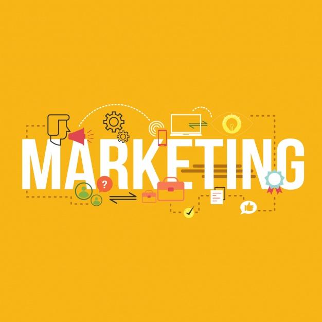 Como a consultoria em Plano de Marketing do Sebrae pode ajudar a sua empresa